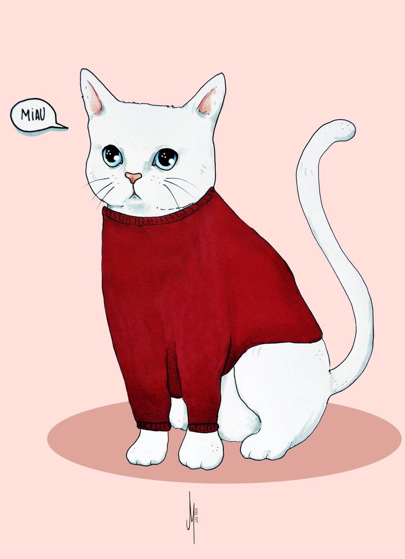 Vestir al gato (proyecto para clase de Nuevas formas publicitarias) 1