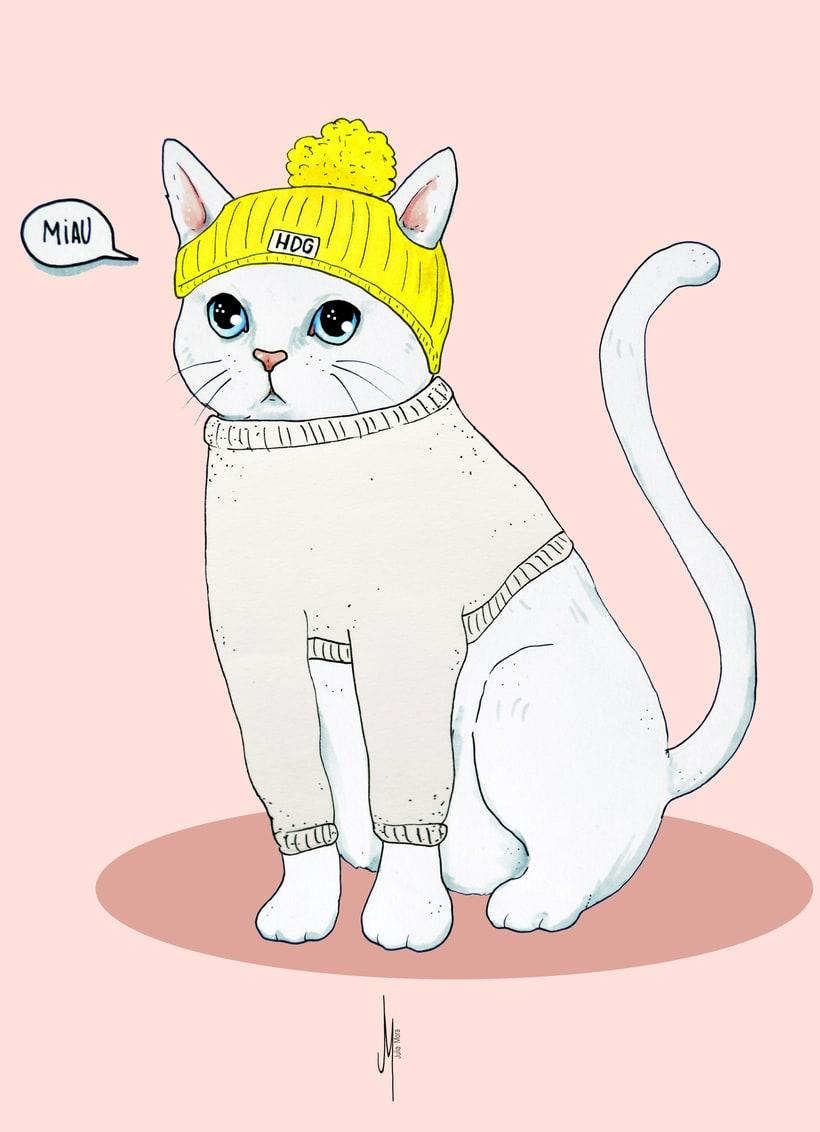 Vestir al gato (proyecto para clase de Nuevas formas publicitarias) 3