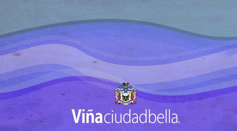 Tarjeta de presentación, desarrollo de identidad corporativa para Ilustre Municipalidad de Viña del Mar. 1