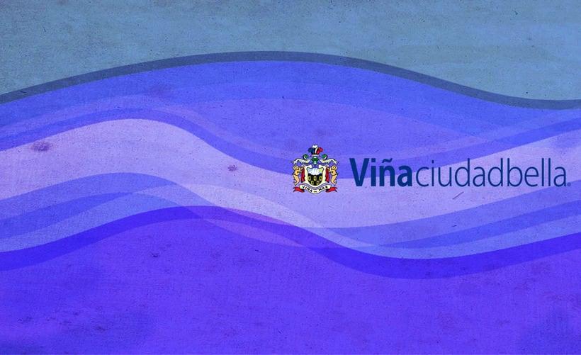 Tarjeta de presentación, desarrollo de identidad corporativa para Ilustre Municipalidad de Viña del Mar. 4