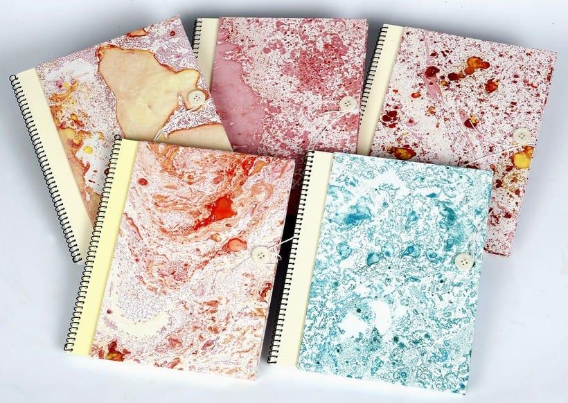 Colección de libretas con papeles de aguas -1