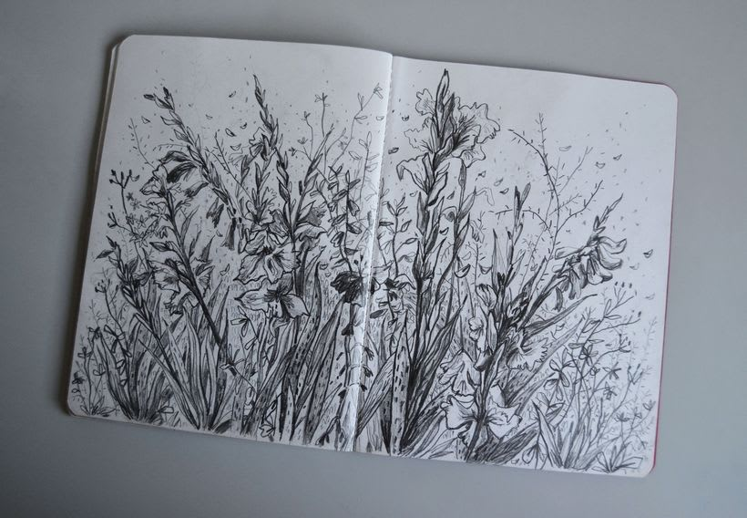 Sketchbook 0