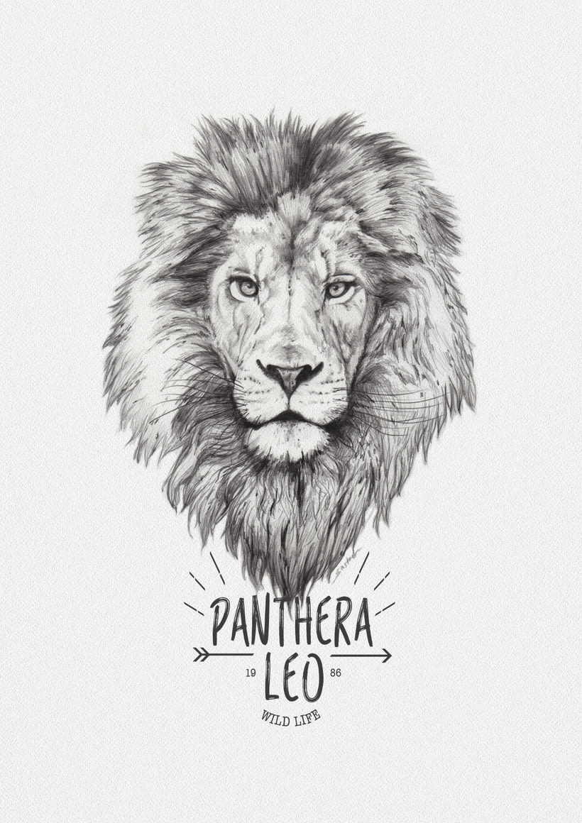 Lion, The King 0