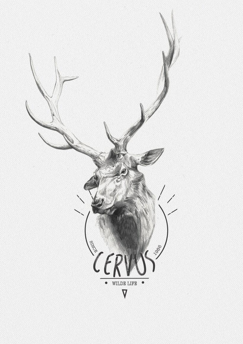 CERVUS -1