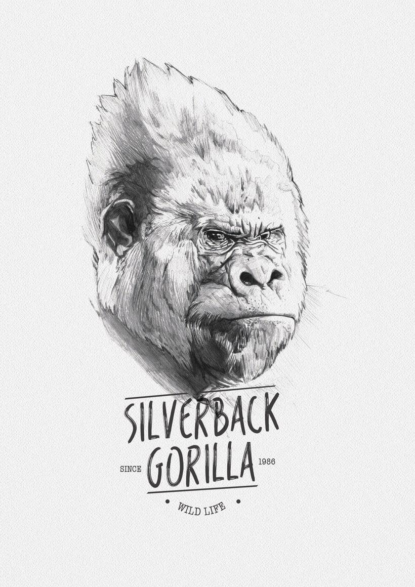 SILVERBACK GORILLA -1