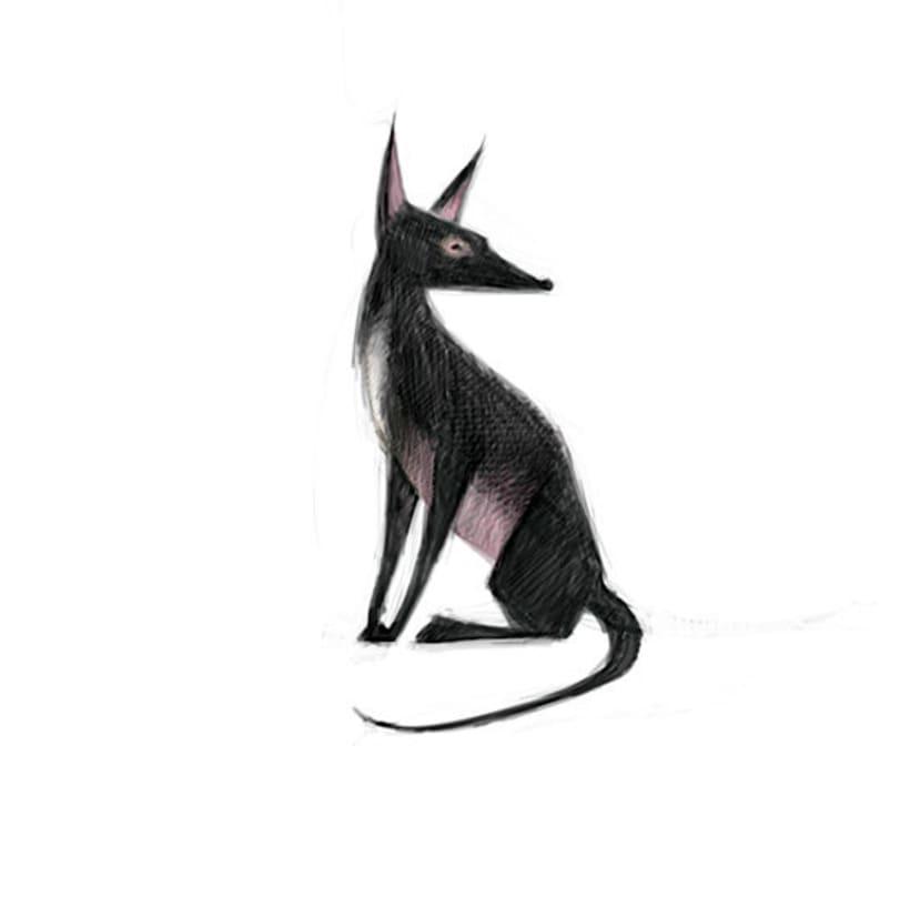 Animales 11