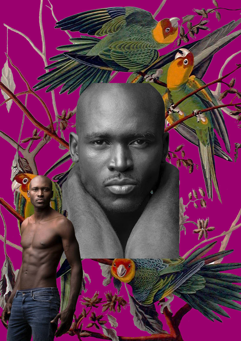 de pájaros y de hombres 3