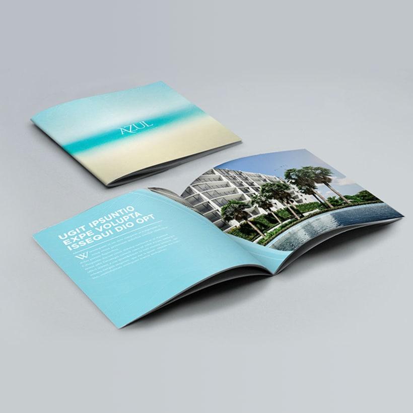 Brochure Azul -1