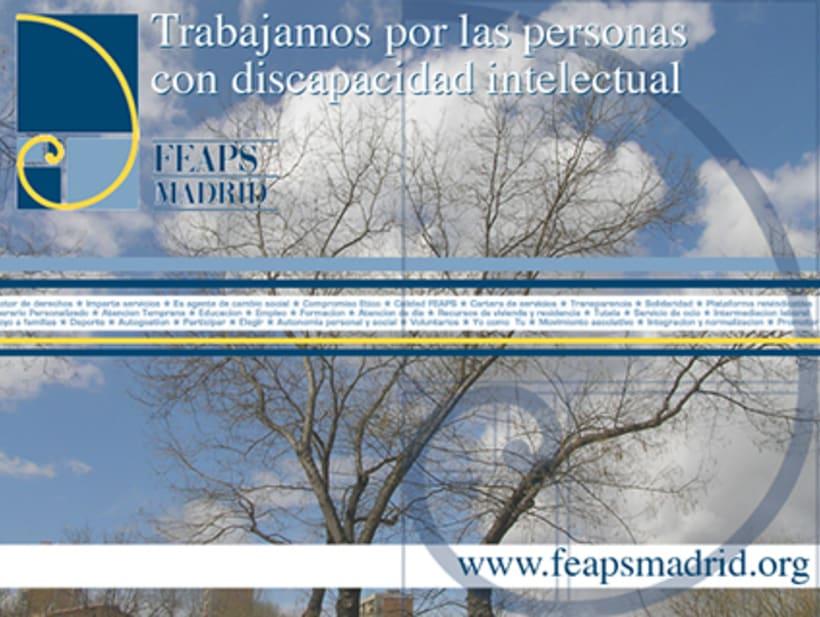 FEAPS Madrid. Materiales diversos 2006-2007 2
