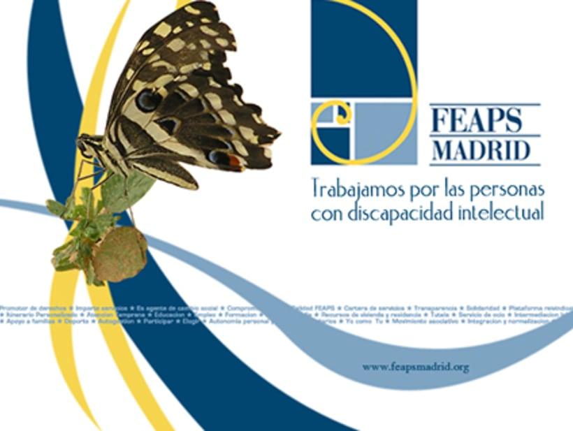 FEAPS Madrid. Materiales diversos 2006-2007 3