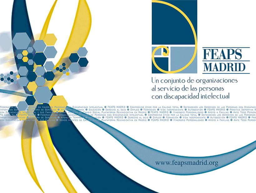 FEAPS Madrid. Materiales diversos 2006-2007 5