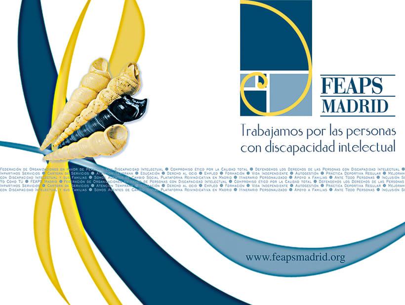 FEAPS Madrid. Materiales diversos 2006-2007 6