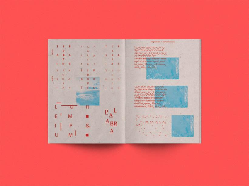 Tipoexperimento fanzine 4