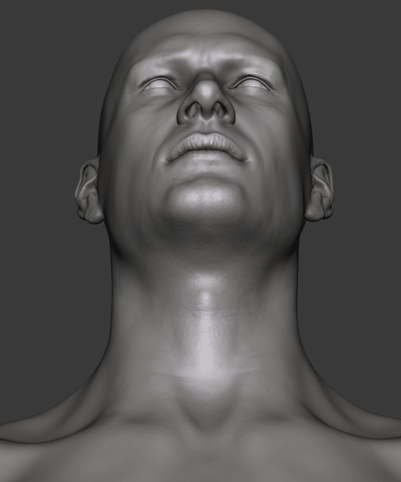 Estudio de una cabeza masculina 8