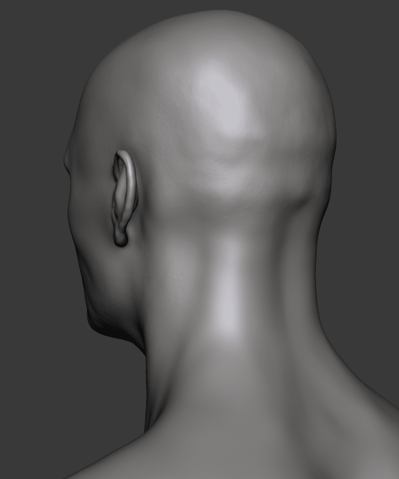 Estudio de una cabeza masculina 6