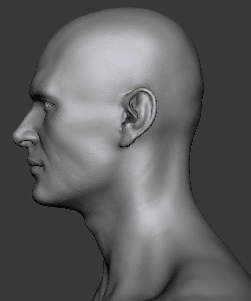 Estudio de una cabeza masculina 5