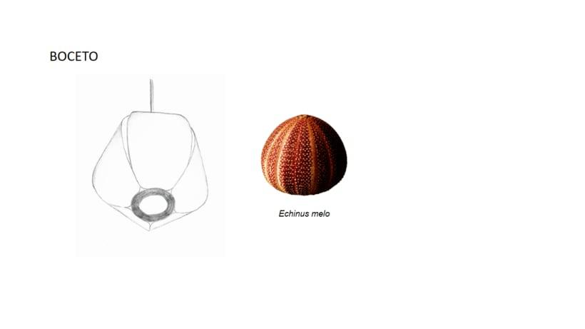 Lámpara Echinus 1