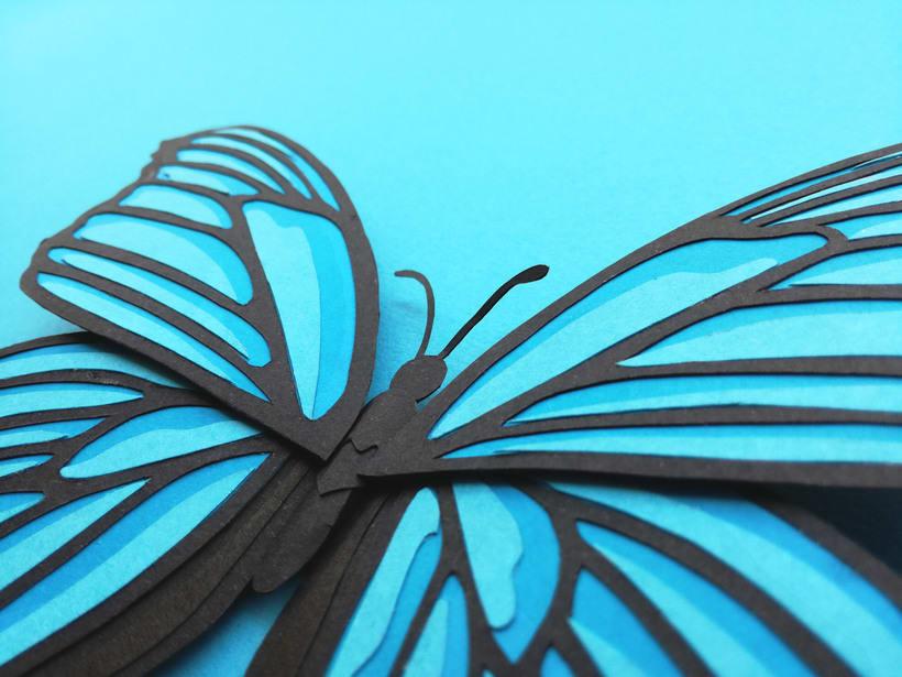 :: Morpho Azul Papercraft :: 4