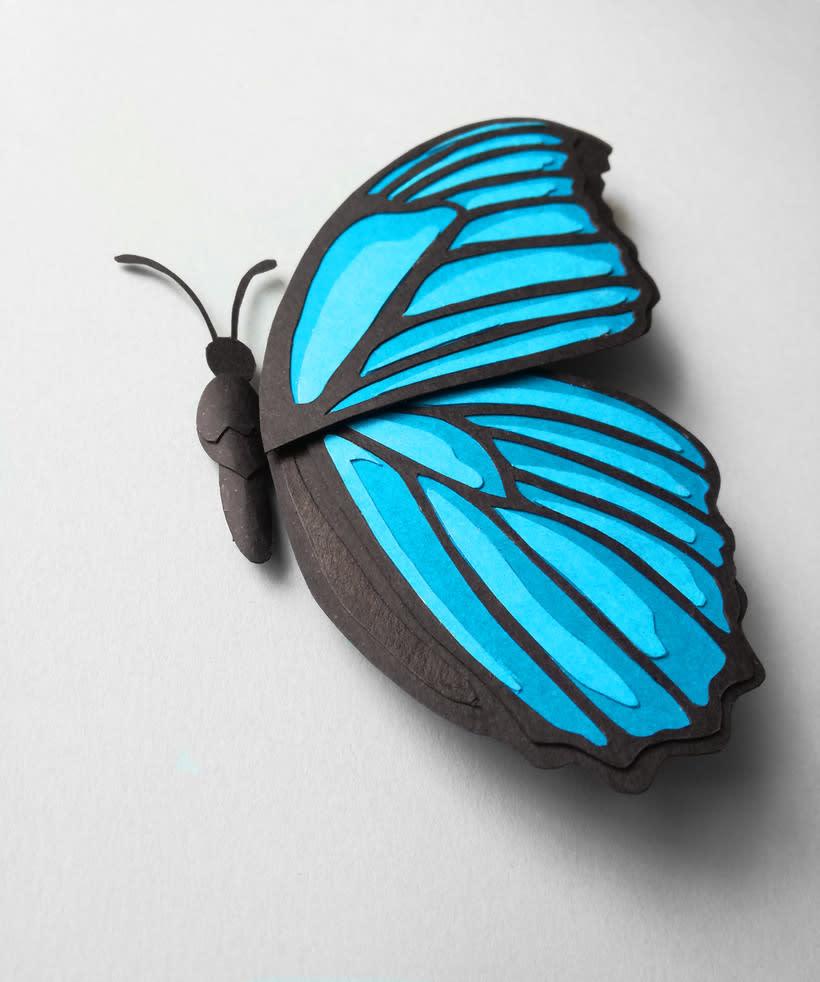 :: Morpho Azul Papercraft :: 2