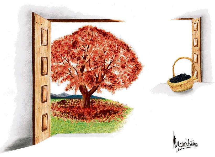 Relatos ilustrados. La ilustraciones del primer concurso de narrativa corta publicados en El 9Nou (Osona/Ripollès y el Vallès Oriental) y en el 9 Magazín 5