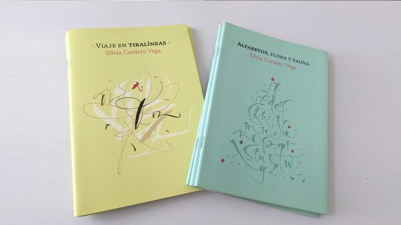 Colección Visual de Caligrafía, libros de caligrafía 1