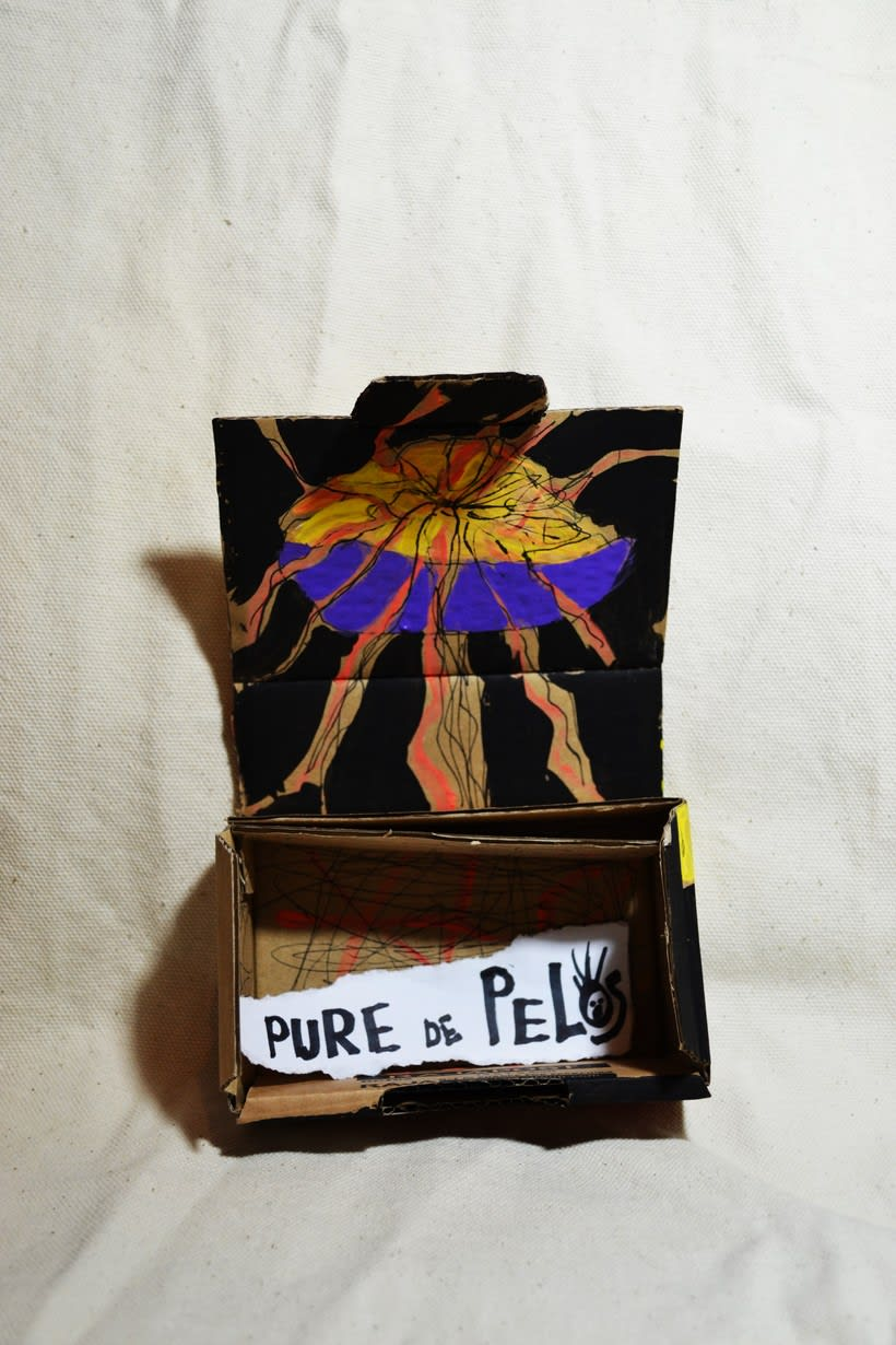 """Las cajas de Resnick (proyecto para BBAA) """"Puré de pelos """" 3"""