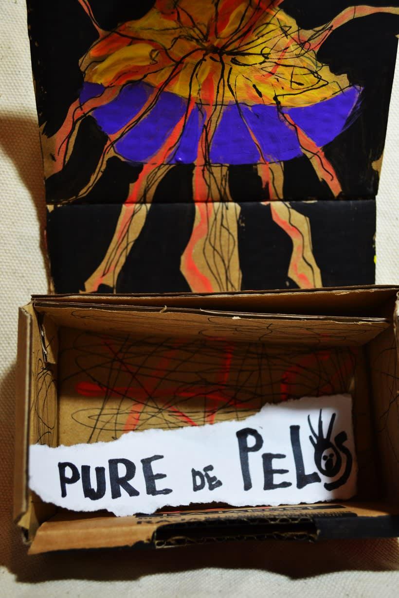 """Las cajas de Resnick (proyecto para BBAA) """"Puré de pelos """" 4"""