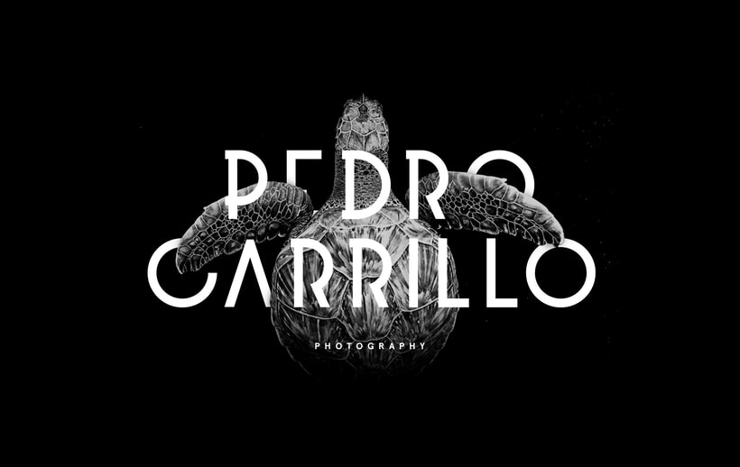 Pedro Carrillo Photography — Branding 0