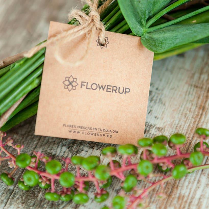 FlowerUp  |  Flores frescas en tu día a día 3