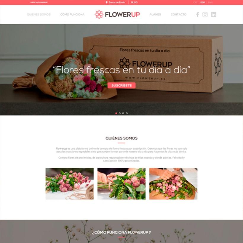 FlowerUp  |  Flores frescas en tu día a día 5