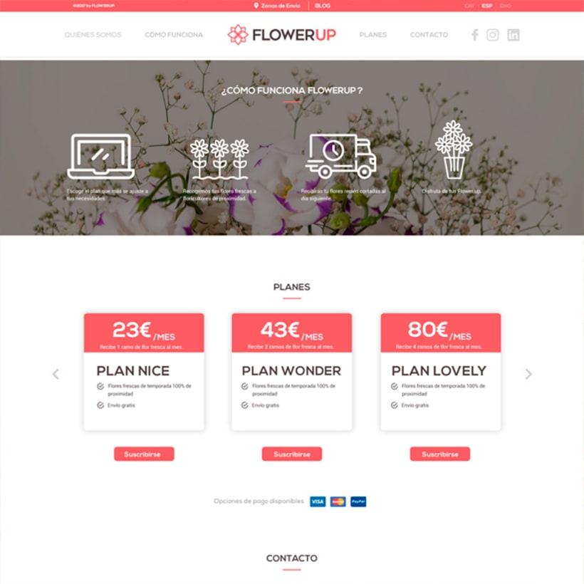 FlowerUp  |  Flores frescas en tu día a día 6