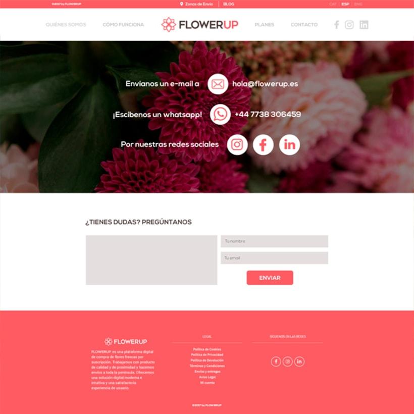 FlowerUp  |  Flores frescas en tu día a día 7