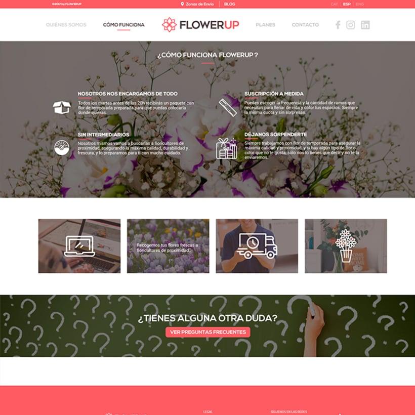 FlowerUp  |  Flores frescas en tu día a día 8