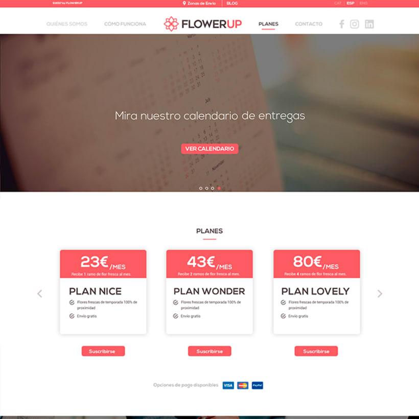 FlowerUp  |  Flores frescas en tu día a día 9