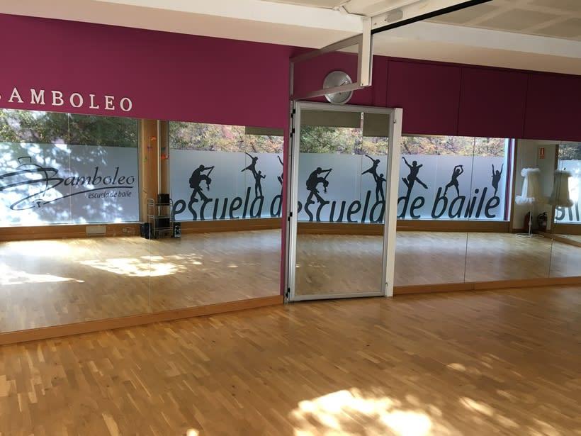 Diseño e intalación de vinilos translúcidos en Madrid 0