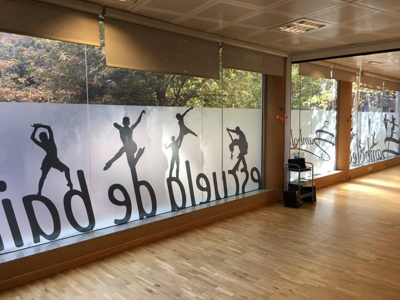 Diseño e intalación de vinilos translúcidos en Madrid 1