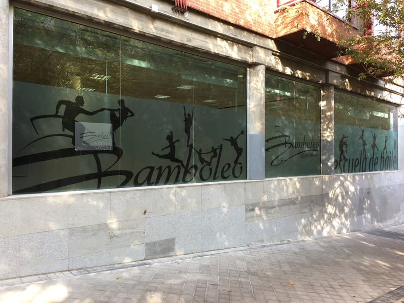 Diseño e intalación de vinilos translúcidos en Madrid 3