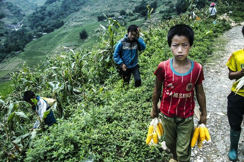 Retratos del trabajo infantil 5
