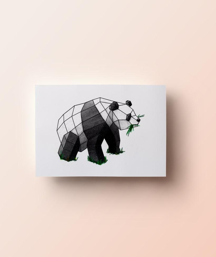 PANDA VECTOR  6