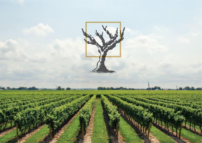 AMURA | D.O.Ca. Rioja 12