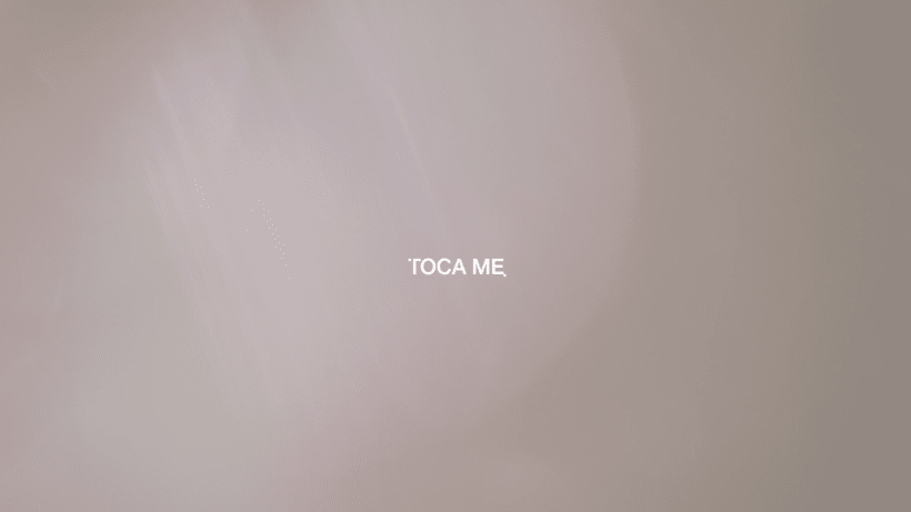 TOCAME the touch  0
