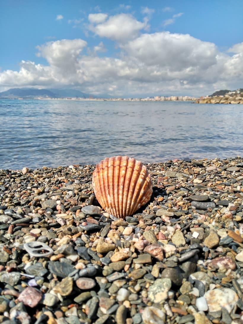 FOTOGRAFÍA en Málaga 3