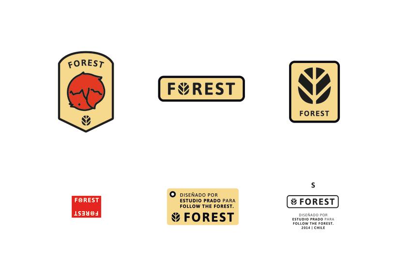 FOREST, diseño de identidad gráfica y marca 4