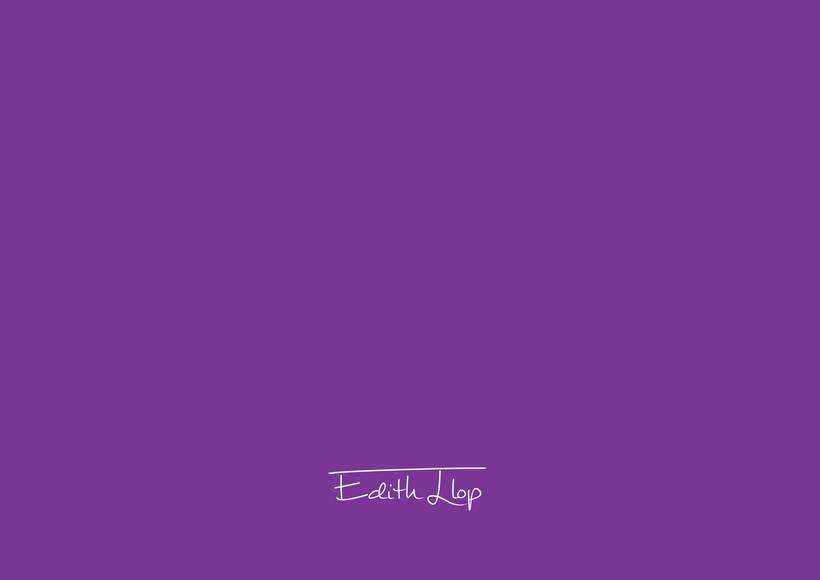 Manual de Identidad Corporativa - Edith Llop 38