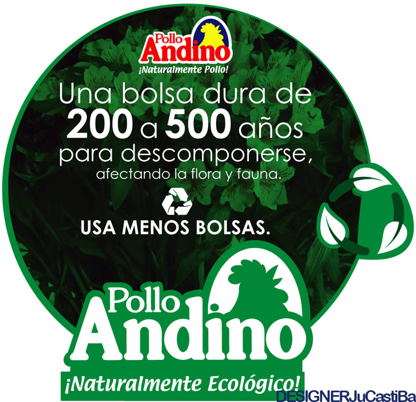 POLLO ANDINO - DISEÑO - MARKETING -1
