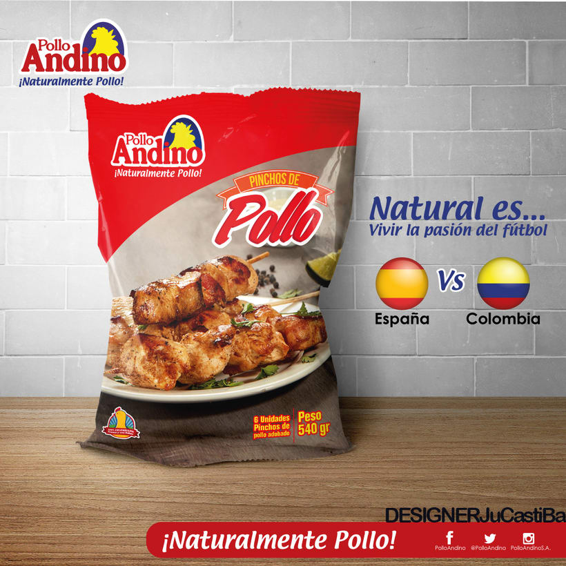 POLLO ANDINO - DISEÑO - MARKETING 1