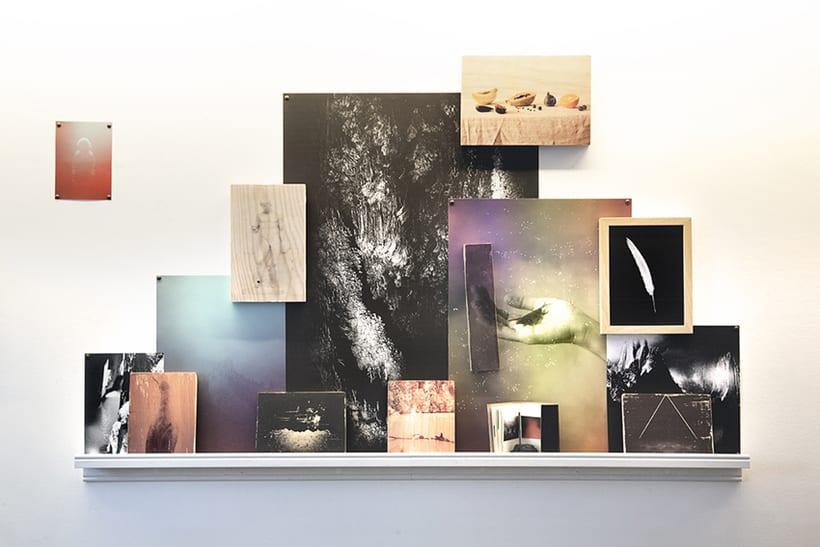 Medusa Collective (colectivo ficticio de artistas) 20