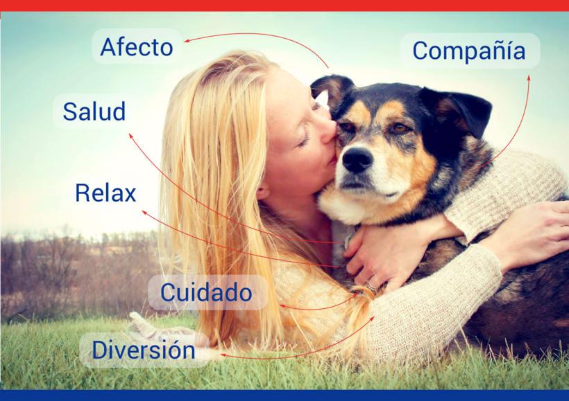 United pets of... - Creatividad publicitaria para todos los públicos 3