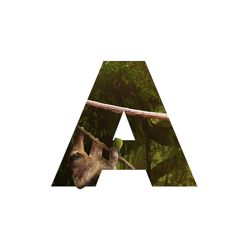 Amazonas 0