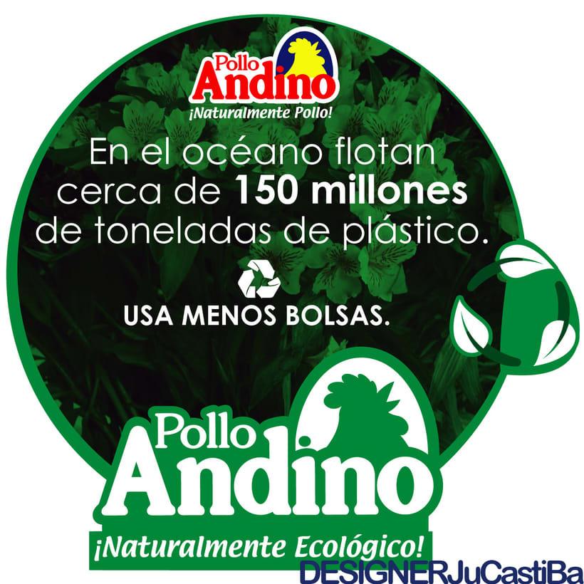 POLLO ANDINO - DISEÑO - MARKETING 0